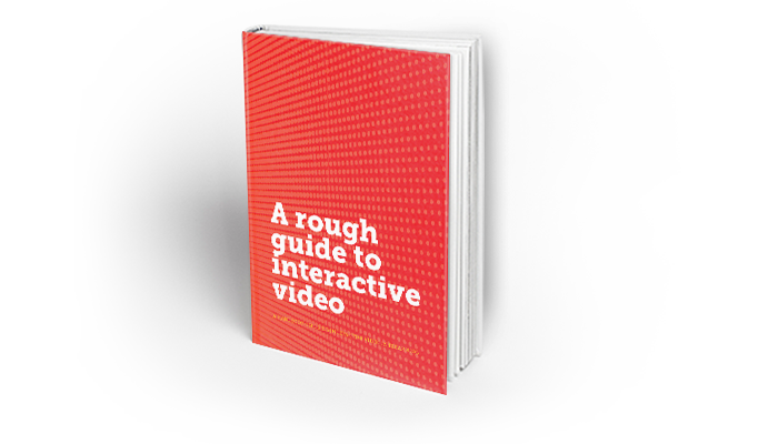 A Rough Guide to Interactive Video